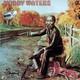 Muddy Waters  - Muddy Waters (2 LP Set) Chicago Golden Years – 5