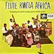 Various Artists Elias and his Zig-Zag Jive Flutes, Black Mambazo, Little Kid Lex, Swing Tone Whistlers, Inkintsho Brothers  - Flute Kwela Africa - presenting the world's leading penny whistle groups