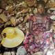 Nina Simone Arranged By Harold Wheeler, Nina Simone Produced By Harold Wheeler, Nat Shapiro, Nina Simone  - It Is Finished