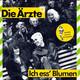 Die Ärzte Produced by Hoffmann, Die Ärzte  - Ich ess' Blumen Blumen (Felsenheimer) Das Ist Rock'n'Roll (Urlaub-Felsenheimer-Liebimg) Limited edition with Gwendoline-Stickers